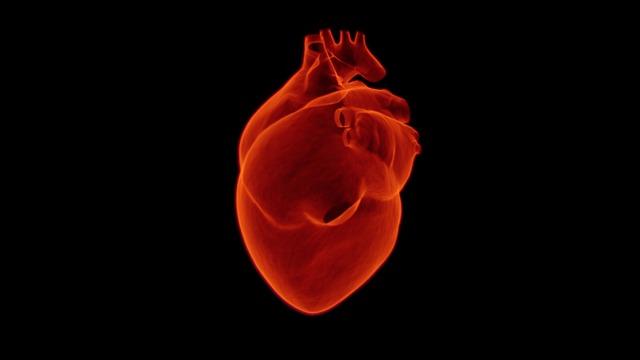 heart-1767552_640.jpg